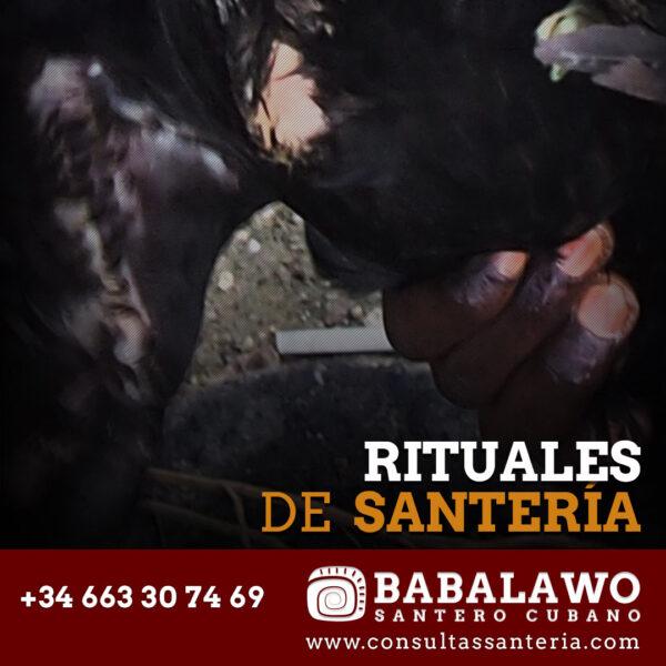 Rituales de Santería Cubana