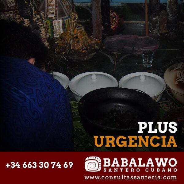 Consulta Urgente con un Babalawo